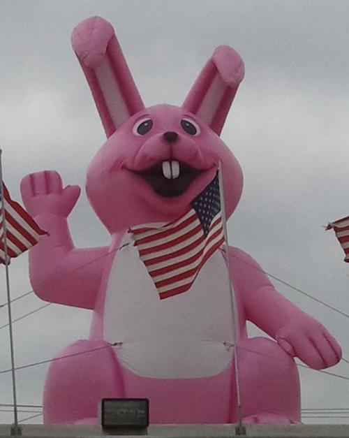 Bunny Rabbit Inflatable